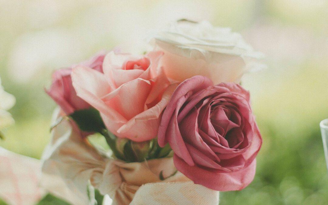 Blumen sind immer ein schönes